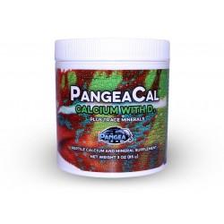 Pangea Cal mit D3