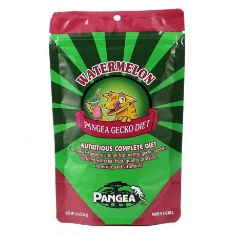 Wassermelone - Pangea Gecko Diet
